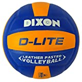 Dixon Leather Volleyball D-Lite, Standard (Multicolor)
