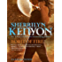 Born Of Fire: Number 2 in series (League Series)