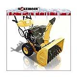 Holzinger HSF-110(LE) Schneefräse