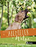 Abenteuer Welpe: Überlebenstipps für die ersten Wochen -