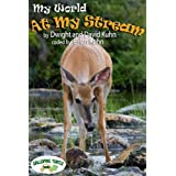 My World: At My Stream (English Edition)