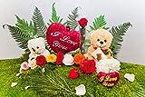 Rosen-Te-Amo Das Geschenk zum Valentinstag - Konservierte Rose (55 cm, Rot Inkl. Sandra Rich Solifleur- Glasvase) Geschenke für Freundin haltbare rote Rose für sie
