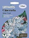 Unwins bebildertes P ckchen Aschenpflanze, silber Staub 350 Samen