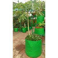 """YUVAGREEN Green with Orange 200 GSM UV Treated Grow Bags for Terrace Gardening 24""""x 24"""" Pack of 2"""
