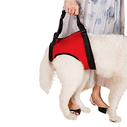 dogs-lift-harness-dogs-lift-support-rehabilitation-harness-helping-support-for-elderly-or-arthritis-