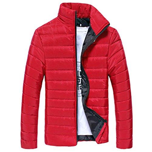 Hommes Coton Stand Zipper Chaud Hiver Veste Manteau Épais Tefamore (Rouge, M)