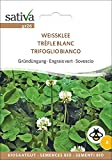 Gründüngung Weissklee | Bio-Gründüngung