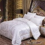LBJNKBYX Winterbettdecke Extra Warm Bettdecke dauerhaft optimale Bauschkraft Gesunder Schlaf Einfache Pflege ähnlicher Liegekomfort formbeständig und reißfest ist,D,150 * 200cm