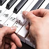 HANDSOME Transparent Plastic Removable Piano and Keyboard Note Stickers - Up to 88 KEY SET for the black and white keys Include a 49KEY/61KEY/88KEY keyboard chart that you can paste easy