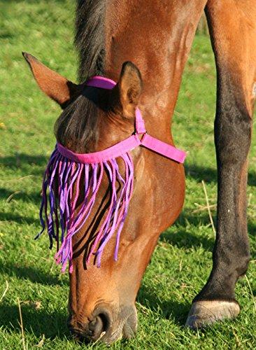 Violett Medium JHL Hufglocken