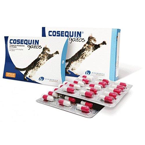 COSEQUIN TASTE GATOS 45 capsulas