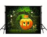 (200cm150cm) Pumpkin Carriage Polyester Cotton Photo Background Customize Seamless Waterproof Printed Camera Photography Backdrop yy0041