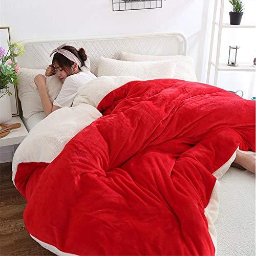 Volltonfarbe Coral Fleece Bettbezüge Thicked Keep Warm Quilt Sets Einzel Doppel Flanell Bettbezug King Size Vorne Und Hinten Plüsch Einfache Atmosphäre 150x200 cm ( Farbe : D , größe : 150*200cm ) -