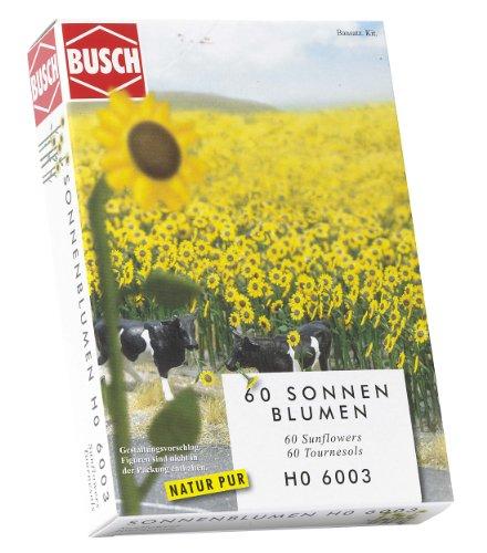 Bush - Girasoles (60 unidades) importado de Alemania