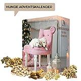 Hunde Advent-Kalender I Weihnachtskalender mit 24 hochwertigen Feinkostartikeln für ihren Vierbeiner. Adventskalender für Tierliebhaber und Hundebesitzer