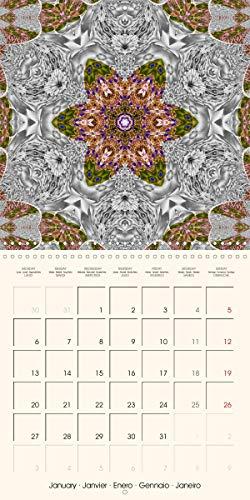 Mandala (Wall Calendar 2020 300 × 300 mm Square): Twelve original mandala designs to help ease your way through the year (Monthly calendar, 14 pages ) (Calvendo Faith)