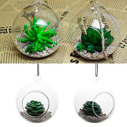 SENZEAL 2 Stück zum Aufhängen Terrarium Design Glas für Sukkulenten/Air Pflanzgefäß Container Home Office Hochzeit Heimgarten Dekor (Kleine Ornamente Klare Glaskugel)