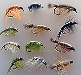 Angeln Fliegen Garnelen und kriechen Nymphs Zwölf Pack Größe 8–12UK Qualität gebunden Fliegen Pack # 18