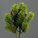 Tannen Pinie Pick mit kleinen Zapfen, uni grün, Set von 3 Mini-Picks, ca. 25 cm lang, hochwertige Kunstfloristik von DPI