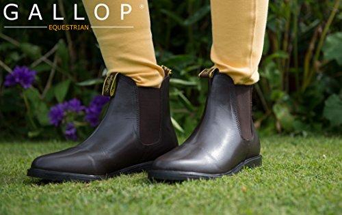 Gallop braun Classic Leder Jodhpur-Boots, schwarz (Herren-zaumzeug)