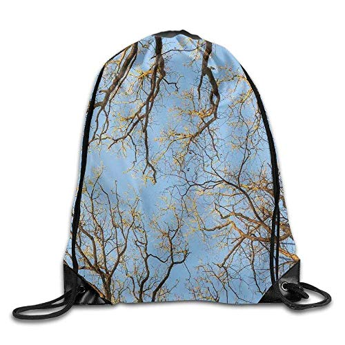 Etryrt Turnbeutel/Sportbeutel, Premium Drawstring Gym Bag, Drawstring Backpack Crown of Trees Under Vibrant Sky Twig Birch Tranquil Air Radial Drawstring Gym Sack Sport Bag for Men and Women (Rucksäcke Tree Dollar)