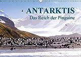 Antarktis - Das Reich der Pinguine CH-Version (Wandkalender 2020 DIN A3 quer): Antarktis - Lebensraum der Pinguine - Ein Blickfang im Büro und zu Hause (Monatskalender, 14 Seiten ) (CALVENDO Natur) - Max Steinwald