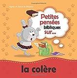 Petites pens¨¦es bibliques sur la col¨¨re: Celui qui - Best Reviews Guide