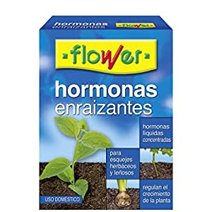 Flower 1–30595-ormoni enraizantes