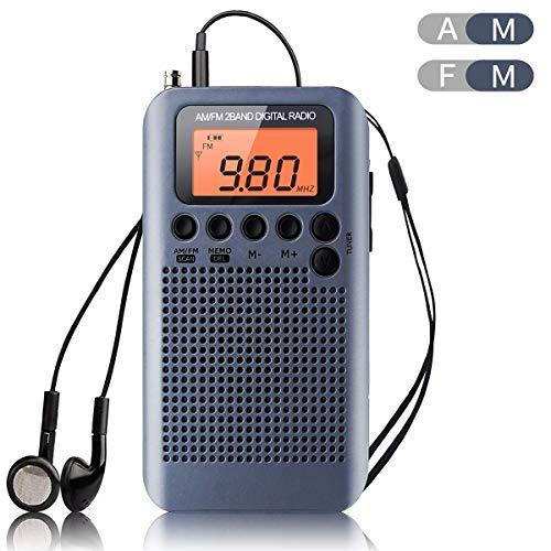 Lychee Radio de Bolsillo Portátil Mini Am Radio Estéreo FM con Altavoz, Reloj Despertador y Temporizador para Dormir, Altavoz (Gris)
