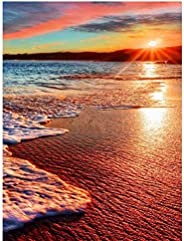 Yamft Diy Paint By Numbers For Adults Beach Scenery Oil Painting Paint By Number Kits Diy Oil Painting Kit For