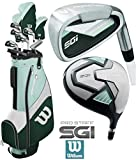 The Golf Store 4u Ltd Wilson ProSTAFF SGi 2019 Golfset