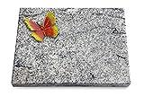 Generic Grabtafel, Grabplatte, Grabstein, Grabkissen, Urnengrabstein, Liegegrabstein Modell Pure 40 x 30 x 3-4 cm Viskont-White-Granit, Poliert inkl. Gravur (Bronze-Color-Ornament Papillon 2)