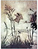 "6"" x 4"" Greetings Card Arthur Rackham Peter Pan in Kensington Gardens (8)"