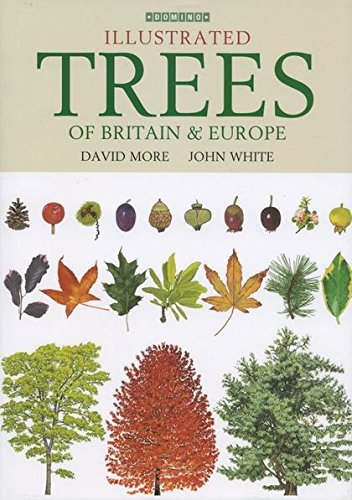Encyclopedia of Trees