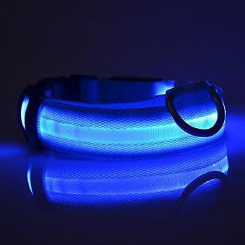 Keysui Collier de chien LED Flashing Lights Dog bleu Light Collar Avec M