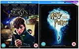 Fantastic Beasts and Where To Find Them + Harry Potter and the Philosopher's Stone + Harry Potter and the Chamber of Secrets + Harry Potter and the Prisoner of Azkaban + Harry Potter and the Goblet of Fire + Harry Potter and the Order of the Phoenix + Harry Potter and the Half-Blood Prince + Harry Potter and the Deathly Hallows, Part 1 & 2 Movie Collection [Includes Digital Download] + Extras