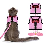 Best cat harness - Bojafa Cat Harness and Leash Set (2 Pack) Review