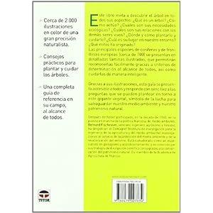 EL ÁRBOL (El Libro De (tutor))