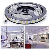 Anten LED Streifen Kaltweiß, Streifenlicht 5m 12V DC, LED DIY Strip, Lichtleiste mit klebeband, LED Lichtband mit 300 Stücke Lichtquelle SMD 5630 LEd Leisten