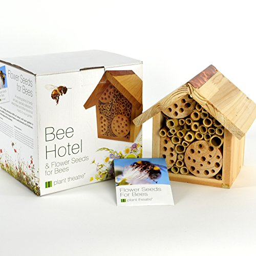 Plant Theatre Bee Hotel & Flower Seeds for Bees - Gift Boxed - Seeds Included, Great Mothers Day Gift Test