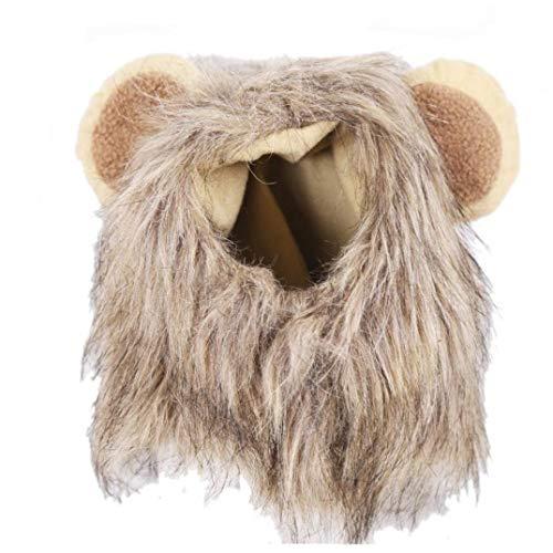 Zonfer 1pc Löwe Mähne Perücke Pet Kostüm Bequeme Kleidung Fancy-Kleid für Halloween Weihnachten Ostern Aktivität (S 28cm) (Katze Im Hut Familien Kostüm)