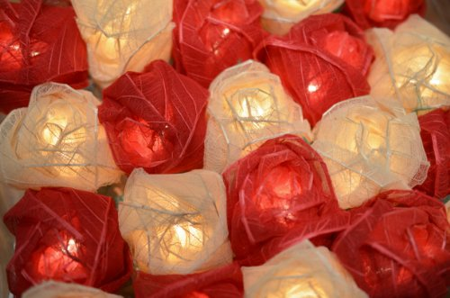 red-and-cream-rose-led-fairy-lights-posted-from-the-uk