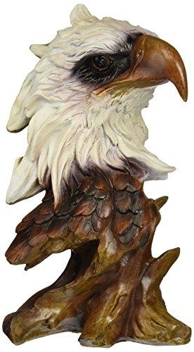 stealstreet ss-ug-py-263Sammlerstück Adler Büste Skulptur Dekoration Figur Figur Modell