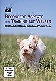 Besondere Aspekte beim Training mit Welpen: Seminarvortrag von Katja Frey & Viviane Theby [2 DVDs]