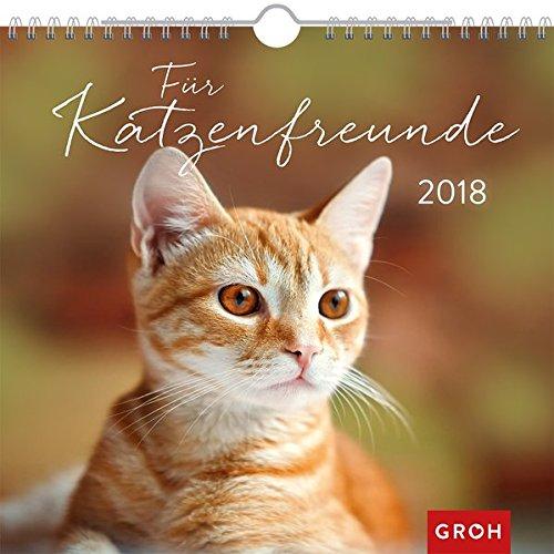 Für Katzenfreunde 2018: Dekorativer Wandkalender mit Monatskalendarium | Maße (BxH): 21x20cm (Katze Dekorative)