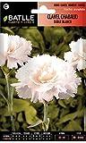 Semillas de Flores - Clavel Chabaud Doble blanco - Batlle