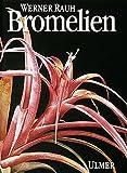 Bromelien. Tillandsien und andere kulturwürdige Bromelien