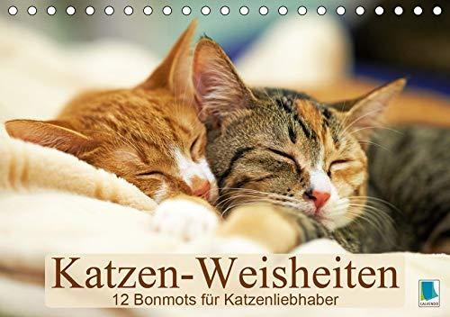 Katzen-Weisheiten: 12 Bonmots für Katzenliebhaber (Tischkalender 2020 DIN A5 quer)