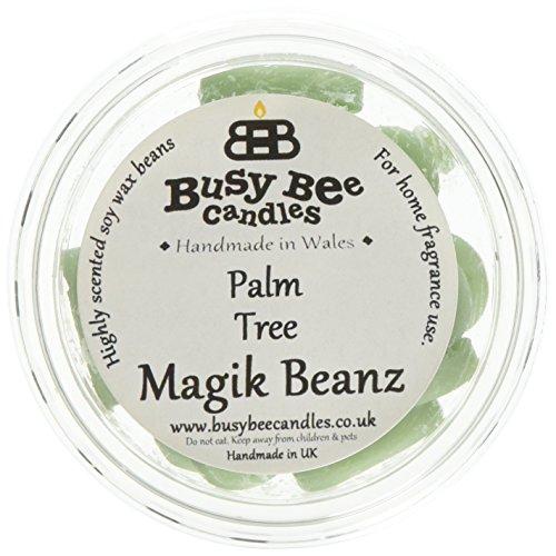Scheda dettagliata Busy Bee Candles Magik Beanz Palma, Colore: Verde, Confezione da 6