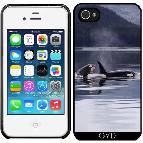 Leder Flip Case Tasche Hülle für Apple iPhone 5C - Wal Tier Delphin Sealife by WonderfulDreamPicture Starre Kunststoff